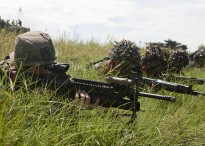 U.S. Marines and Tentara Nasional Indonesia - Angkatan Laut (TNI) marines find concealment in the tall grass of Banongan Beach. (May 29, 2010)