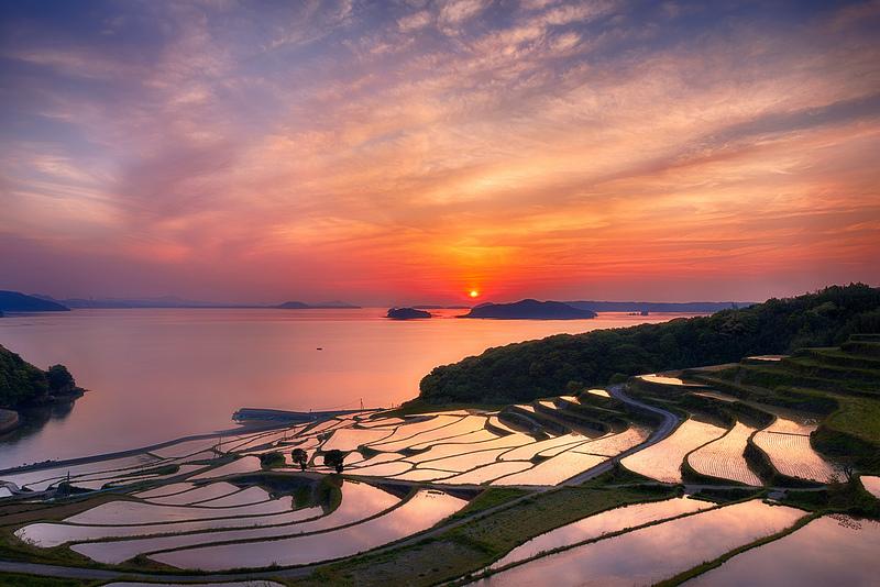 Rice terrace in Nagasaki Prefecture, Japan