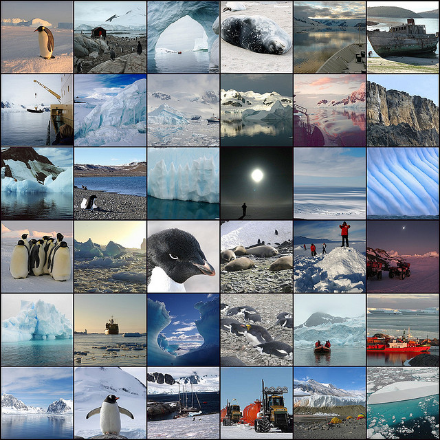 A collection of Antarctica images