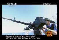 Screenshot from CCTV4 Documentary