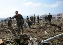 U.S. Marine Corps Lance Cpl. Garrett Williams, attached to a Combat Logistics Regiment 3, clears debris during Operation Tomodachi in Noda, Japan, April 1, 2011. More than 80 Sailors, Marines, Airmen and civilians from Misawa Air Base, Japan, participated in the cleanup operations. Operation Tomodachi was a multinational effort coordinated with Japan to respond to a magnitude 9.0 earthquake and a tsunami that struck northern Japan March 11, 2011. (U.S. Navy photo by Mass Communication Specialist 1st Class Matthew Bradley/Released)