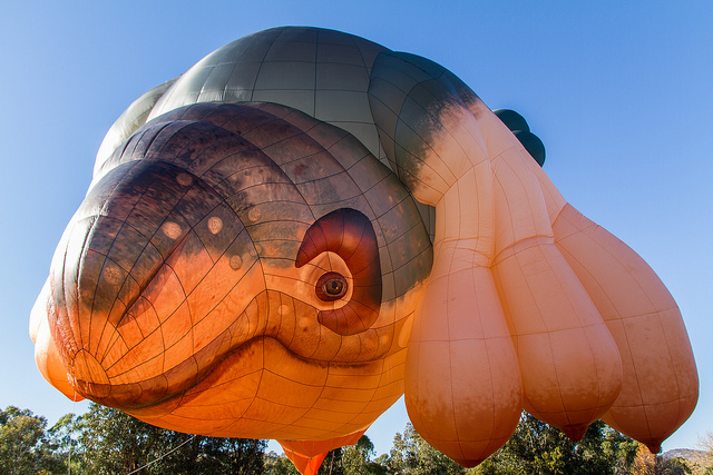 Canberra's Skywhale