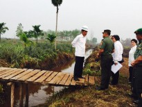 President Joko Widodo of Indonesia, inspecting the work in building retention basin to restore peatland moisture and to stop the forest fire in Rimbo Panjang, Riau.