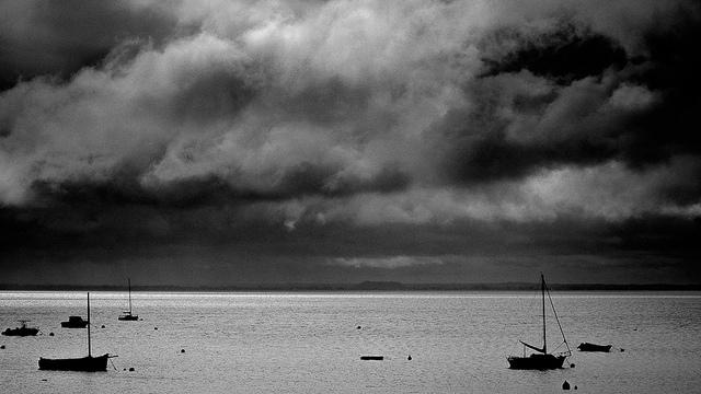 Port grey
