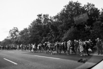 Sep 4, 2015: Refugees on the Hungarian M1 highway on their march towards the Austrian border