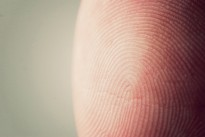 All travellers going through Singapore will have their fingerprints taken