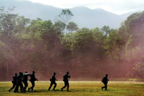 Australian and Indonesian Army soldiers carrying a stretcher during the Junior Officer Combat Instructor Training course conducted by the Australian Army's Combat Training Centre—Jungle Training Wing from 28 September to 10 October 2014.